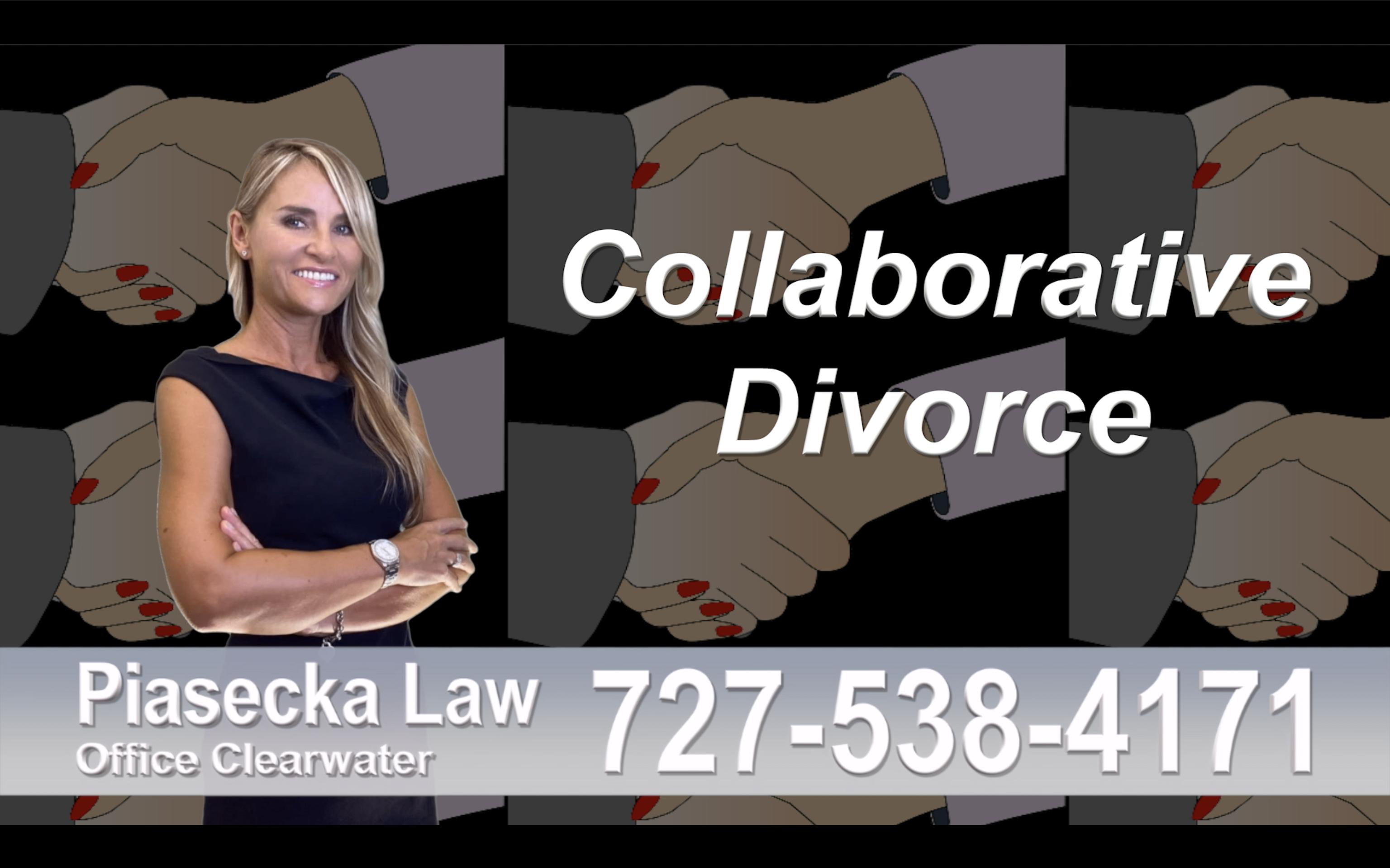 Polski Adwokat Rozwodowy Tampa, Collaborative, Divorce, Attorney, Agnieszka, Piasecka, Prawnik, Rozwodowy, Rozwód, Adwokat, Najlepszy Best